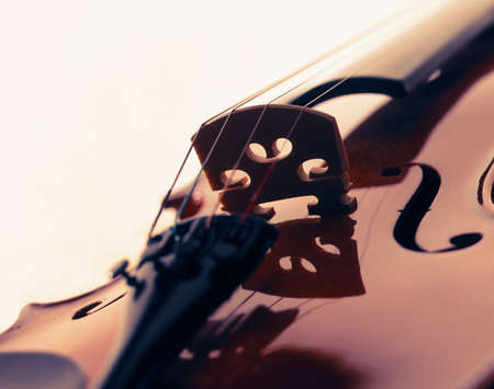 VIOLIN CLOSE UP ON WHITE BACKGROUND