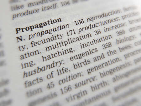 Close up of thesaurus page showing definition of the word propagation 写真素材