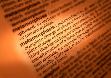 Close up of dictionary page showing definition of the word metamorphosis