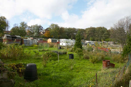 Garden sheds and greenhouses on allotments