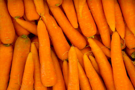 Fresh carrots in close up