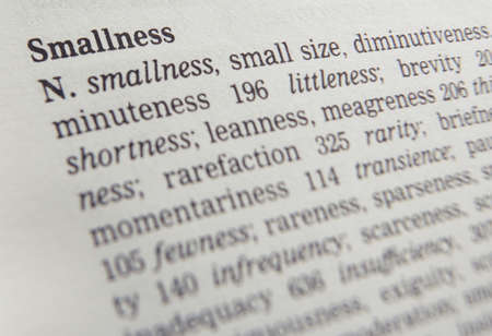 Close up of thesaurus page showing description of the word smallness