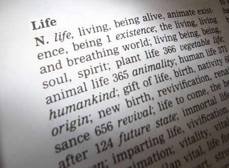 Close up of thesaurus page showing description of the word life 写真素材