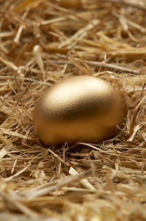 Single golden egg in nest of straw in close up