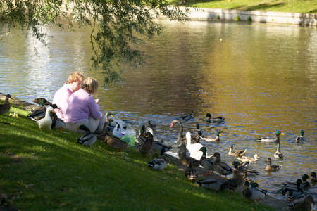 Couple feed ducks on bank of river Cam in Cambridge, England