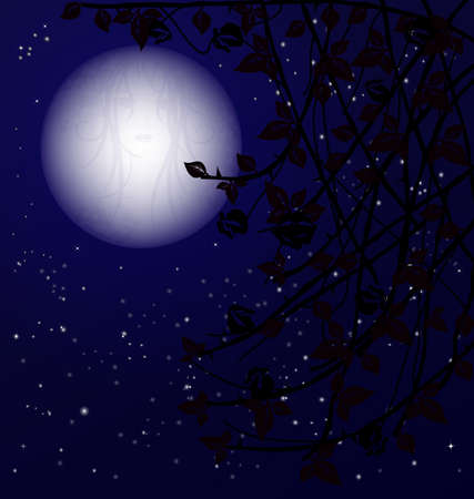 rose bush: night starry sky with a big moon shape a womans face, in front of the black branch bush