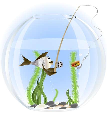 canna pesca: da un acquario pesci gettato la canna da pesca innescate hamburger