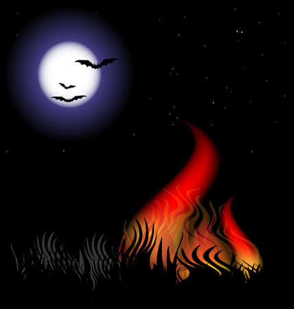 moonlit night in a grass fire flames Stock Vector - 9606909
