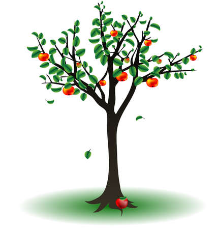 op een witte achtergrond is de apple tree Stock Illustratie