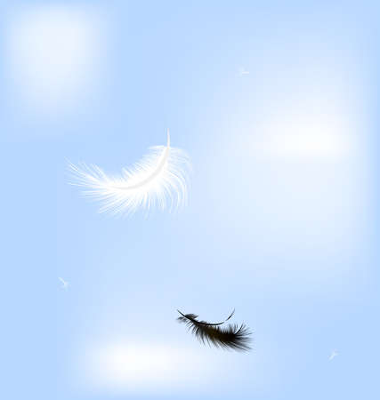 feather pen: in the blue sky flying black and white feathers Illustration