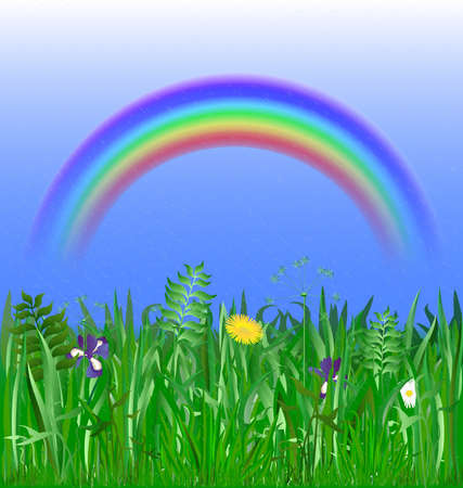 religion  herb: rainbow in the blue sky, rain, blooming green meadow Illustration