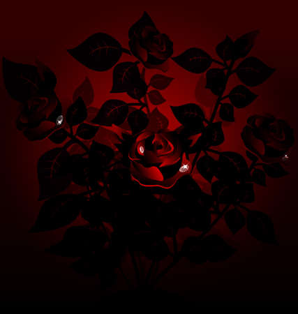 rose bush: on an dark background of a large black bush of red roses