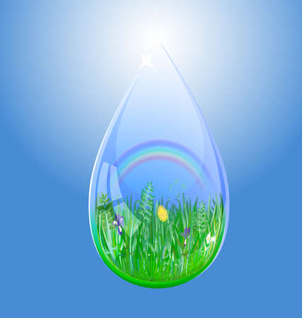 a large drop of water is blue sky, rainbow and flowering herbs
