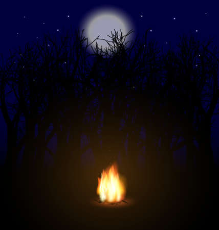 nightly: flame in the night