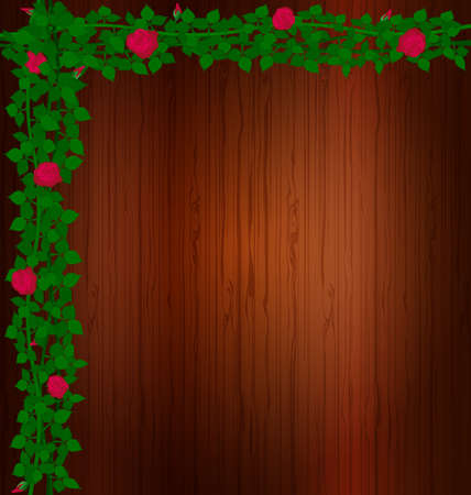 brawn: background wood and rose Illustration