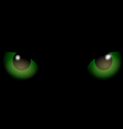 snoot: on an black background are two green eyes of black cat