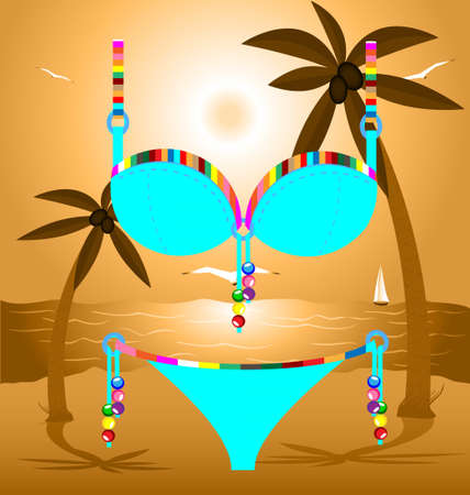 on a beach is lady s blue swimsuit  pants and bra Vector