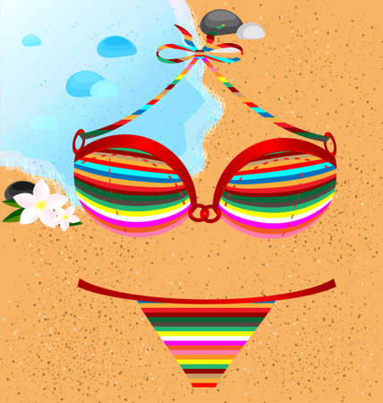 underclothing: on a beach is lady s  many-colored swimsuit  pants and bra