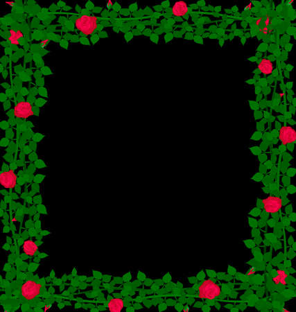 bush mesh: black background with weave of red roses and green leaves