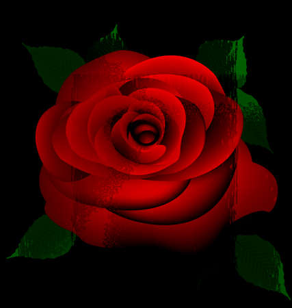 magus: abstract red rose