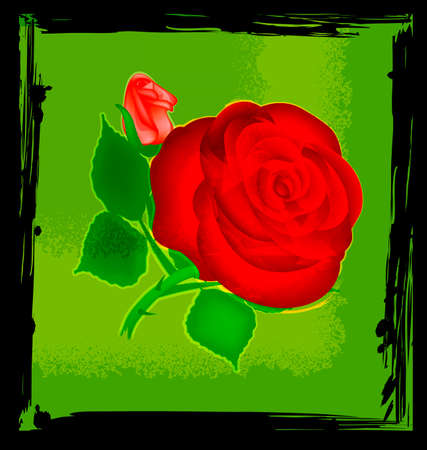 red rose: abstract green and red rose