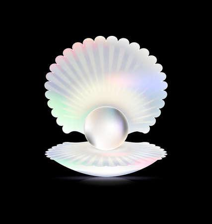 donker en shell