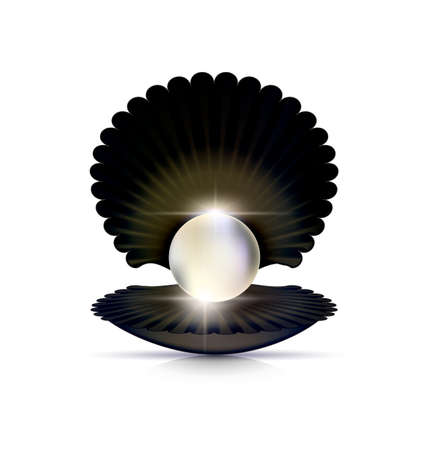 pit: Dark shell and white pearl. Illustration