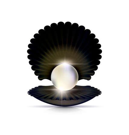 karkas: Donkere shell en witte parel.