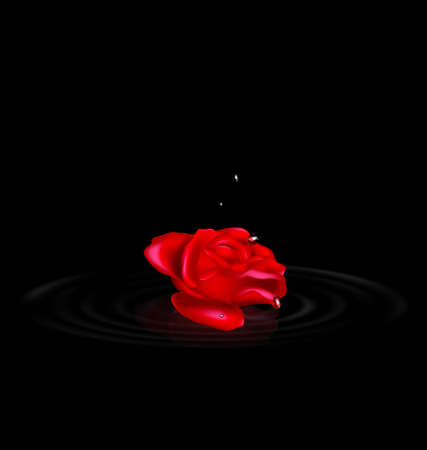 vector illustration dark background and image of the red-colored fantasy flower rose with black drops Çizim