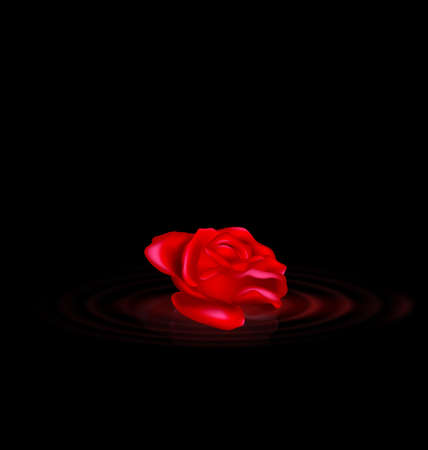 vector illustration dark background and image of the red-colored fantasy flower rose with black waves