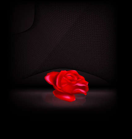 vector illustration dark background and image of the red-colored fantasy flower rose with black veil