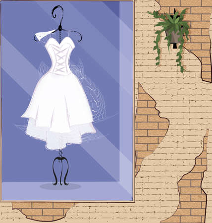 vector illistration stone wall showcase with white dress