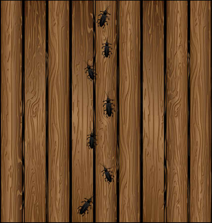 vector illustration wooden brown color board planking with bugs