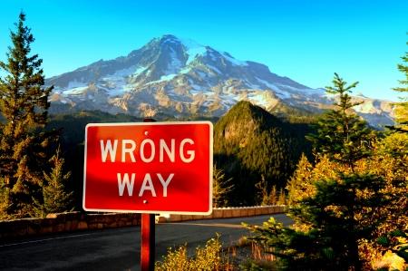 peacefull: Mount Rainier Wa
