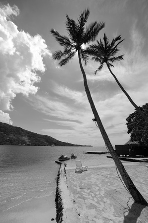 sun drenched: Moorea Beach