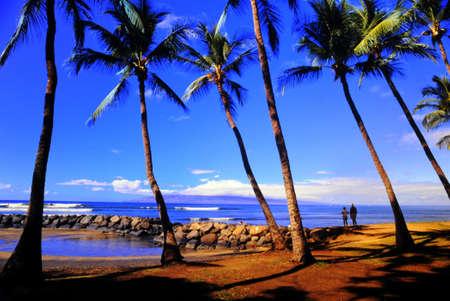 maui: Maui
