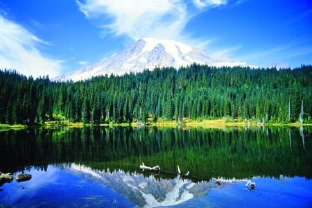 Mount Rainier Stock Photo - 18201886