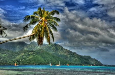 Opunohu Bay Moorea photo