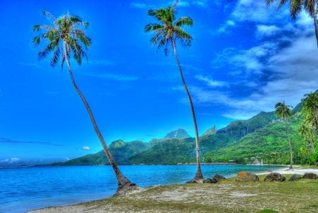 moorea: Public Beach Moorea French Polynesia