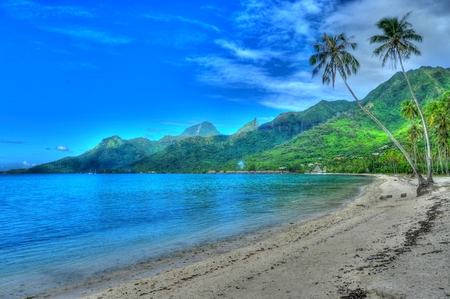 polynesia: Temae Beach Moorea French Polynesia Stock Photo