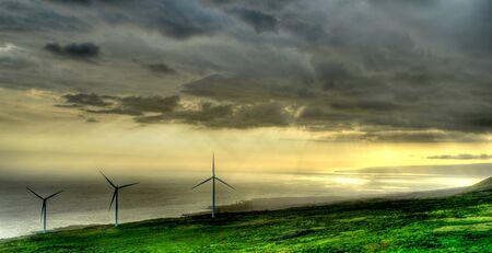 maui: Windfarm Maui