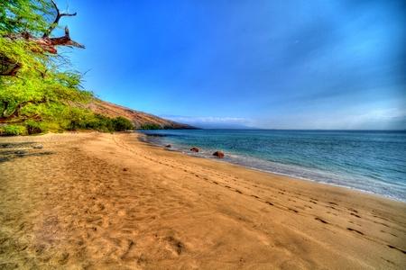maui: Maui beach scene Stock Photo