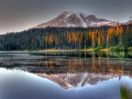 mount rainier: Mount Rainier Washington State,reflection lake