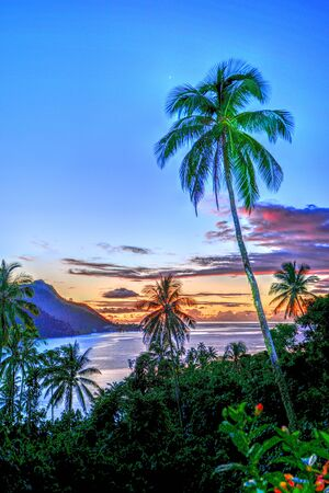 snorkle: Moorea Sunset Stock Photo