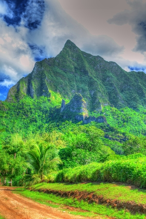 snorkle: Mountain, Moorea Stock Photo