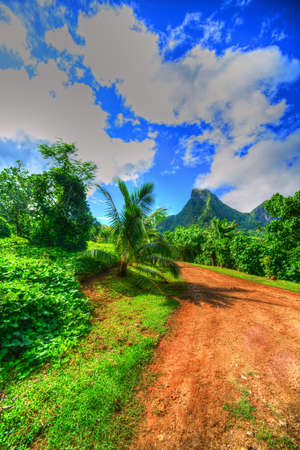 snorkle: Interior road, Moorea, Tahiti Stock Photo