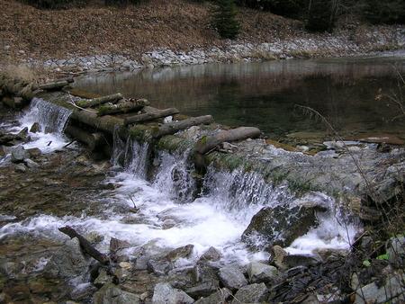creek: creek,