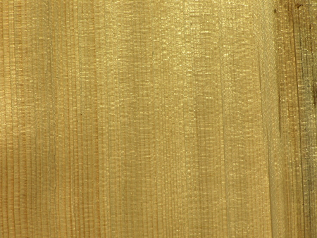 softwood: abstract wooden background
