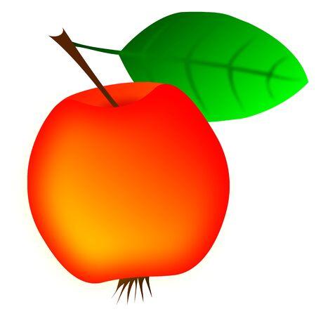 ripe: red apple,Ripe juicy apple, Illustration