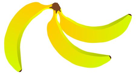 bananas: three bananas , bunch of bananas, yellow bananas Illustration